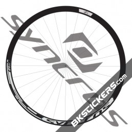 Syncros TR 1.0 Decals Kit - bkstickers.com