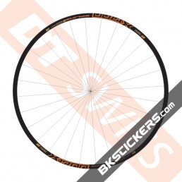 DT Swiss X1700 Spline Two Decals Kit - bkstickers.com