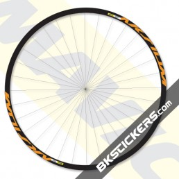 Mavic Aksium Disc Decals kit - custom stickers bkstickers.com