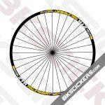 ZTR-Race-Gold-29er-Decals-Kit-03